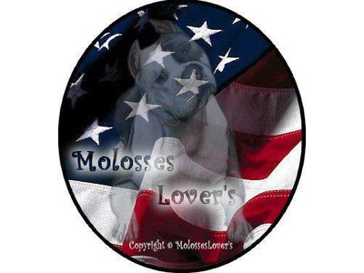 Molosses Lover\'s